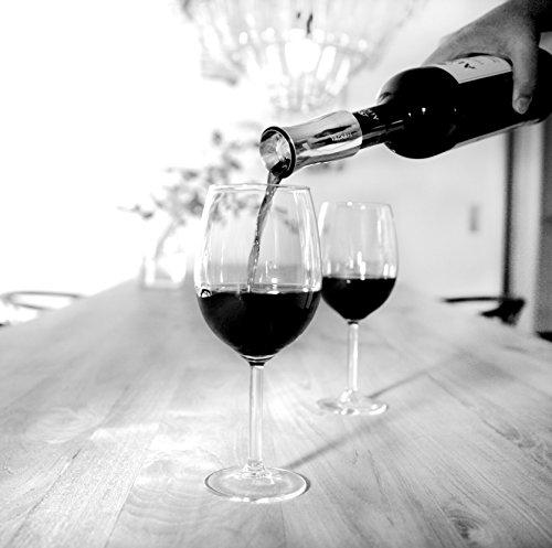 Vagnbys Dekantierer für Wein, Luftdicher Verschluß mit 7 Funktionen