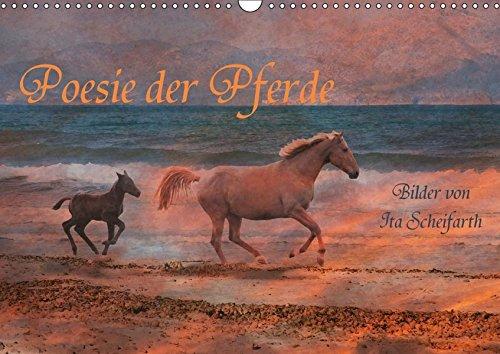 Poesie der Pferde (Wandkalender 2019 DIN A3 quer): Ein Pferdekalender der besonderen Art (Monatskalender, 14 Seiten ) (CALVENDO Tiere)