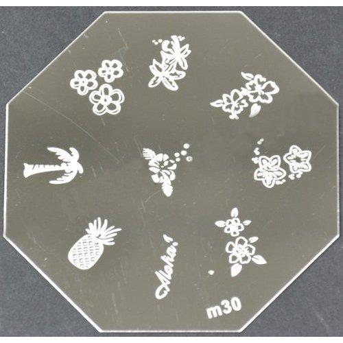 Nail Art emboutissage des tôles - M01 CODE : M30-plaque
