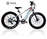 E-FATBIKE Fat E-Bike Standard 26