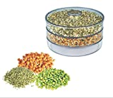 DFS Plastic Hygienic, Healthy and Effective Sprout Maker Containers (Small, Clear) -3 Pieces