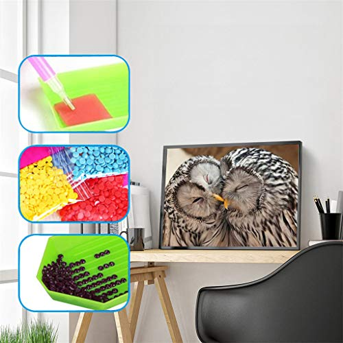 Stickerei-Malerei, DIY 5D Diamant Malerei Kunst kompletter Bohrersatz, voller Diamant Cat & Hund & Eule & Obst 5D Diamant Kunst, Diamant Malerei Set Art Deco (F)