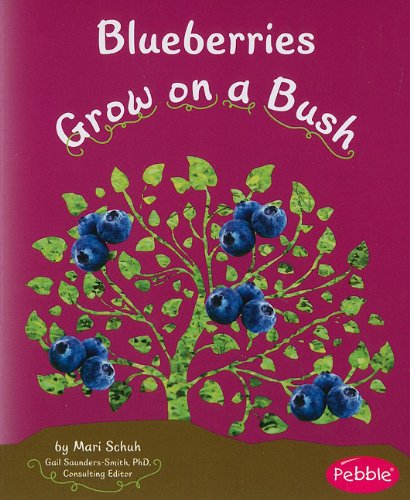 Blueberries Grow on a Bush (How Fruits and Vegetables Grow)