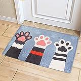 Fußmatten Haustür Katzen Rutschfester und Waschbar Schmutzfangmatte Fußabtreter für Innenbereich, Schlafzimmer, Küche, Badezimmer 40 x 60cm