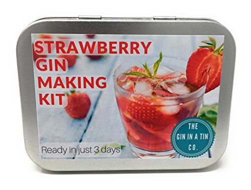 Strawberry gin kit