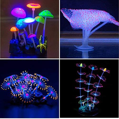 Aquarien Unter Der Voraussetzung Aquarium Becken Rechteckig Standard Größen Glasbecken Glas Aquarienbecken