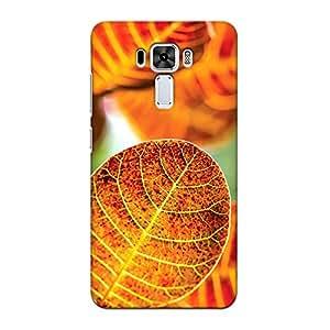 DASM United Asus Zenfone 3 Laser Premium Back Case Cover - Autumn Dry Leave