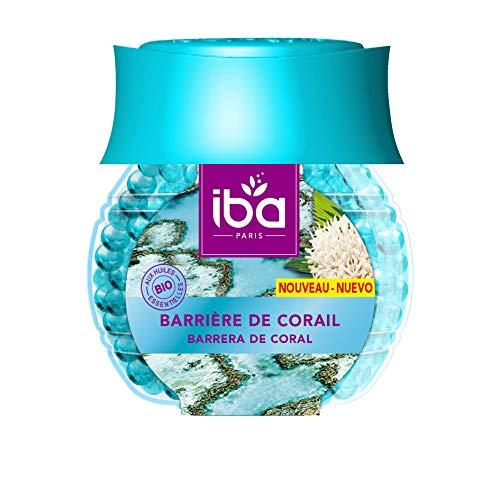 Iba Vendu Par Lot Lot De 4 Parfum Ambiance Petits Espaces Jardin De Grenade M/élange DEpices Livraison Gratuite En France
