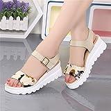 LIXIONG Portátil Sandalias de verano femeninas Pendiente con el estudiante Plataforma impermeable Fondo grueso Vientos universitarios Zapatos romanos -Zapatos de moda ( Color : Blanco , Tamaño : EU40/UK6.5/CN40 )
