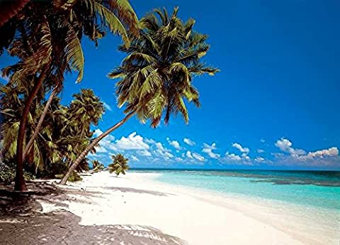 Fototapete MALEDIVES 388x270 Strand Palmen Malediven Indischer Ozean Traumstrand
