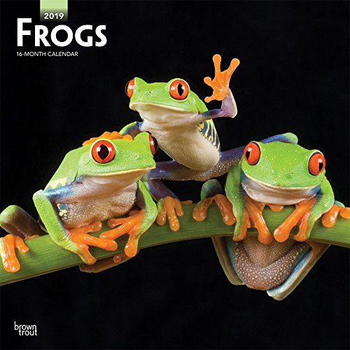 Frogs 2019 Square Wall Calendar por Browntrout