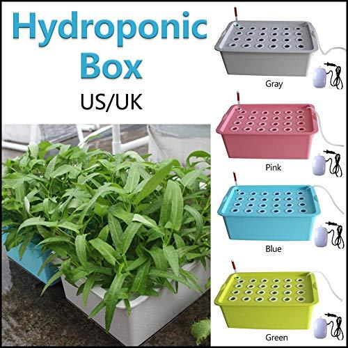 Dough.Q Indoor Hydroponics-System Grower Kit 24 Löcher Hydroponik System Pflanze Blume Pflanzbehälter Tiefwasser Soilless Kultivierungsanlage Kultur Box für Garten Küche