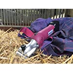 Masterclip Heavy Duty Cordless HD Roamer Horse Clipper with 2 Batteries and Pink Showmate Trimmer Combo Masterclip Heavy Duty Cordless HD Roamer Horse Clipper with 2 Batteries and Pink Showmate Trimmer Combo 51gl90Ux9tL