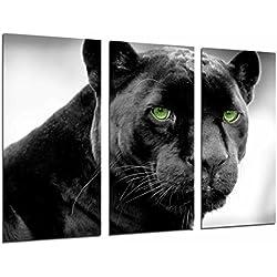 Cuadro Moderno Fotografico Pantera, Jaguar, Felino, Animal Salvaje, 97 x 62 cm, ref. 26703