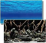 Fotorückwand Mystic beidseitig Bedruckt 120x60cm 2in1 Rückwandposter Rückwand Folie Aquarien Poster Foto Folien