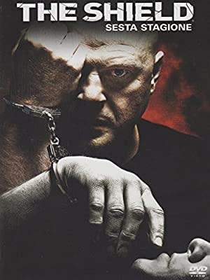 The shieldStagione06 [4 DVDs] [IT Import]