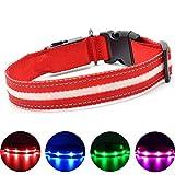 MASBRILL Leuchthalsband für Hunde Aufladbar LED Hundehalsband 100% Wasserdicht Blinkende Lichter mit USB (M, 50cm, Rot)