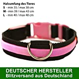 MAILUX LED Hundehalsband Rosa/Pink Größe S - verschiedene Leuchtmodi
