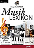 Metzler Musiklexikon 4.0 Bild