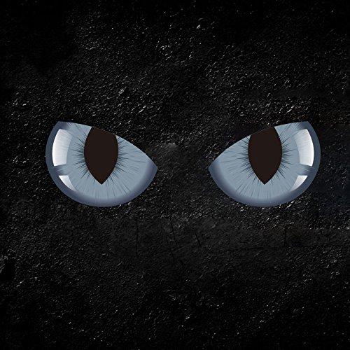 Hanbaili 2Pcs personalisierte Katze Augen 3D Aufkleber 3D Auto Auto Rückspiegel Windows Aufkleber Reflektierende Aufkleber Dekor