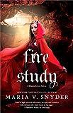 Image de Fire Study