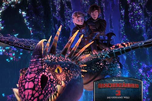 Drachenzähmen leicht gemacht 3 - Die geheime Welt (3D Blu-ray) (+ Blu-ray 2D)