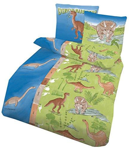 2 tlg. Biber Bettwäsche 135x200 cm Dobnig Dinosaurier blau grün