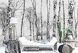 Papier peint mural - Troncs D'Arbres De Bouleau Des Bois - Thème Forêt et arbres - XL - 368cm x 254cm (LxH) - 4 Parts - Imprimé sur 130g/m2 papier intissé EasyInstall - 1X-1211795V8...