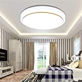 LED Ceiling Light Modern Round Daylight Fitting Lamp Natural White Lighting 12/18/24W for Kitchen, Bedroom, Hallway, Living Room(Silver Edge-24W)
