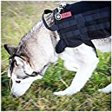 Paystore Armee-Grün, S : OneTigris Army Tactical Dog Training Molle Vest Harness Military Load Bearing Harness SWAT Dog Jacket