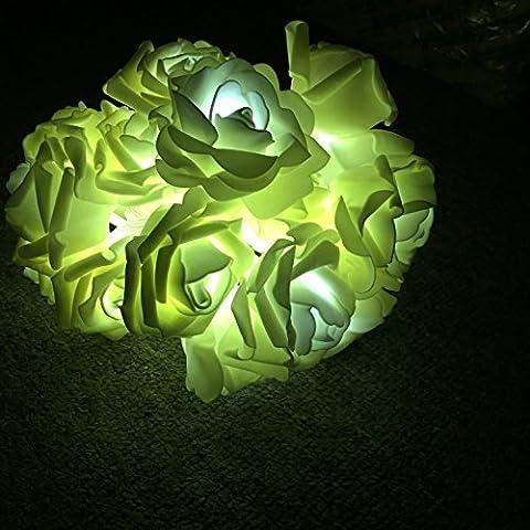 Lerway 20 LEDs Lumineuses Forme de Fleur Rose Floraison Lumineuse Guirlandes Lumières,pour le Parti de mariage, Noël, Jardin Décoration (Blanc Chaud)