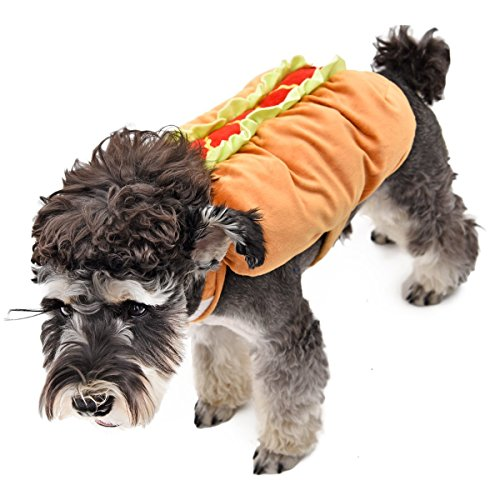 GR3 Haustier Hund Halloween Lustige Mantel Apparels Coole Puppy Outfit Katze Kleidung ( Size : L )
