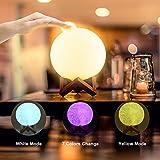 Luce Notturna LED, Lampada Luna 3D Ricarica USB, Lampada Notturna per Bambini Toccare il Controllo Luminosità Regolabile 10cm
