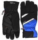 Ziener Großer Geysir GTX (R) PR Ski Alpine, Handschuhe Winter Unisex Erwachsene, Unisex - Erwachsene, Geysir GTX(R) Pr Ski Alpine, Persian Blue
