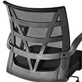 LANGRIA Comfortable V Shape Medium Back Mesh Home Office Desk Chair, Ergonomic Design, Mesh Upholstered Seat Pan, Synchro Tilt Mechanism, 360 Degree Swivel, Max Weight Capacity 130kg, Black Back