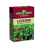 Gründüngung Luzerne (ewiger Klee) 500 g