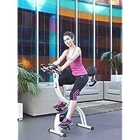 Preisvergleich für ION Fitness AXEL FI022 klappbarer Heimtrainer, Fitnessbike mit rückenlehne, 8 kg schwungmasse, Magnetisches Bremssytem, Transporträder