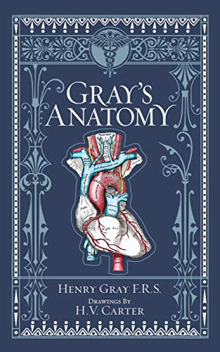 Gray\'s Anatomy (Barnes & Noble Collectible Classics: Omnibus Edition) (Barnes & Noble Leatherbound Classic Collection)