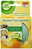 Air Wick Kleiner Frischehelfer Citrus, 30 g