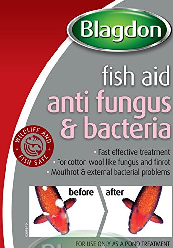 Blagdon Anti-Fungus & Bacteria Treatment for All Pond Fish, Finrot, Mouthrot, External Bacterial Infections, 250 ml 2