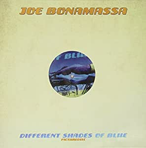 Different Shades of Blue (Ltd.Picture Disc) [Vinyl LP] [Vinyl LP]