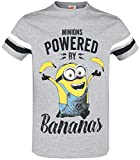 MINIONS Powered by Bananas T-Shirt grau meliert XL