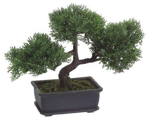 9-artifical-cedar-bonsai-in-rectangular-brown-pot-by-allstate-floral