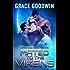 Mated To The Vikens (Interstellar Brides Book 8)