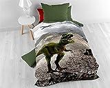 Bettwäsche Baumwolle Sleeptime Kinder Dinosaurier, 155cm x 200cm, Mit 1 Kissenbezüge 70cm x 90cm, Grün