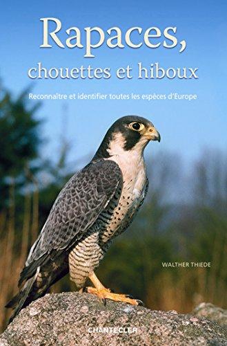 Rapaces, chouettes et hiboux : Reconnaître et identifier toutes les espèces d'Europe