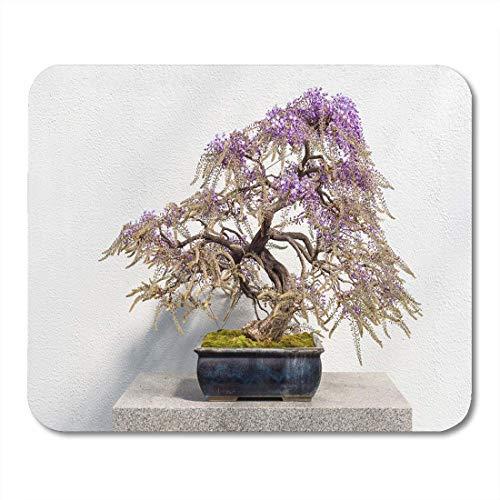 Preisvergleich Produktbild Mauspads Asiatische grüne Bonzai blühende japanische Glyzinie-Bonsais mit rosa Blumen Floribunda weißer Baum-Blüten-Mausunterlage für Notizbücher,  Tischrechnermatten Bürozubehöre