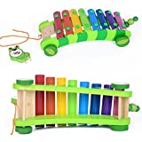 Tickles Baby Wooden Musical Instrument Xylophone car Drag Animal Hand and Struck Piano