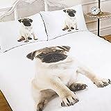 Dreamscene Parure de lit avec housse de couette taies d'oreiller 3D chien Carlin Imprimé Animal–Taille Unique–Lit avec parure de lit