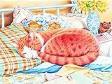 Mammut 116005 - Malen mit Buntstiften - Professional - Katze, 40 x 30 cm